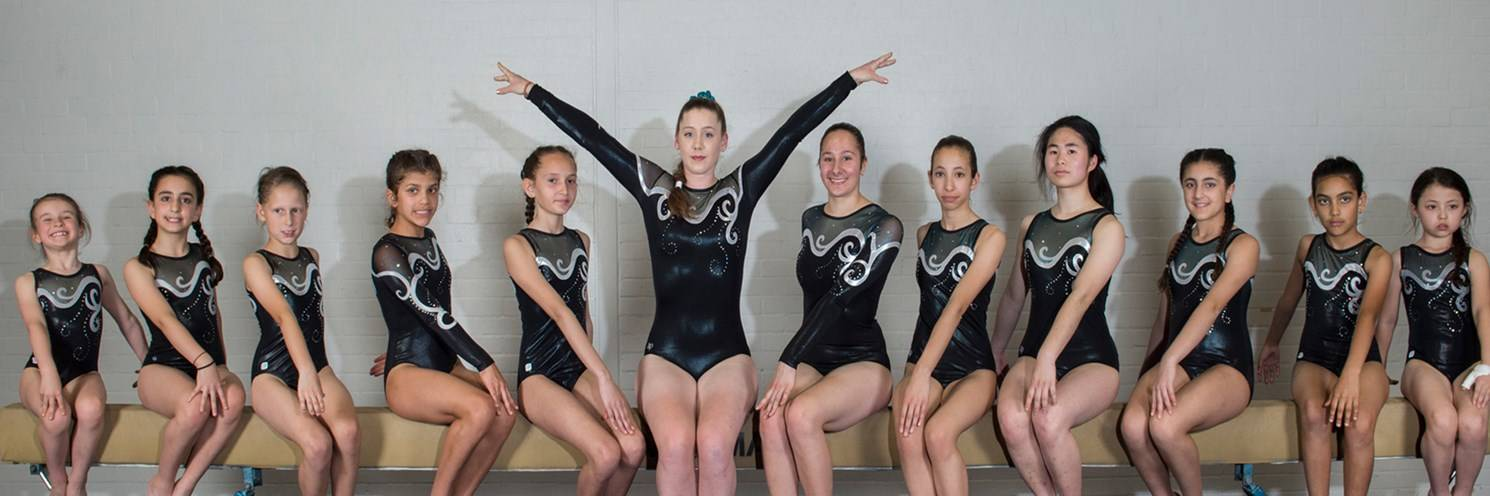 2018 Gymnastics Competitive Group